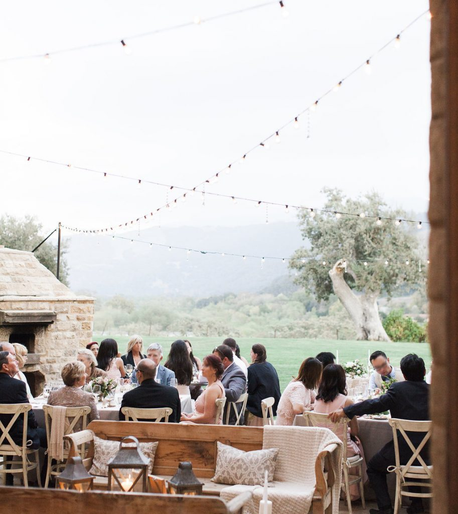 vineyard string lights